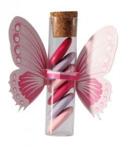 dragées thème papillon