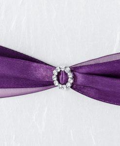 livre d'or violet