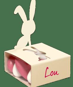 Bapteme paques- boite à dragées lapin