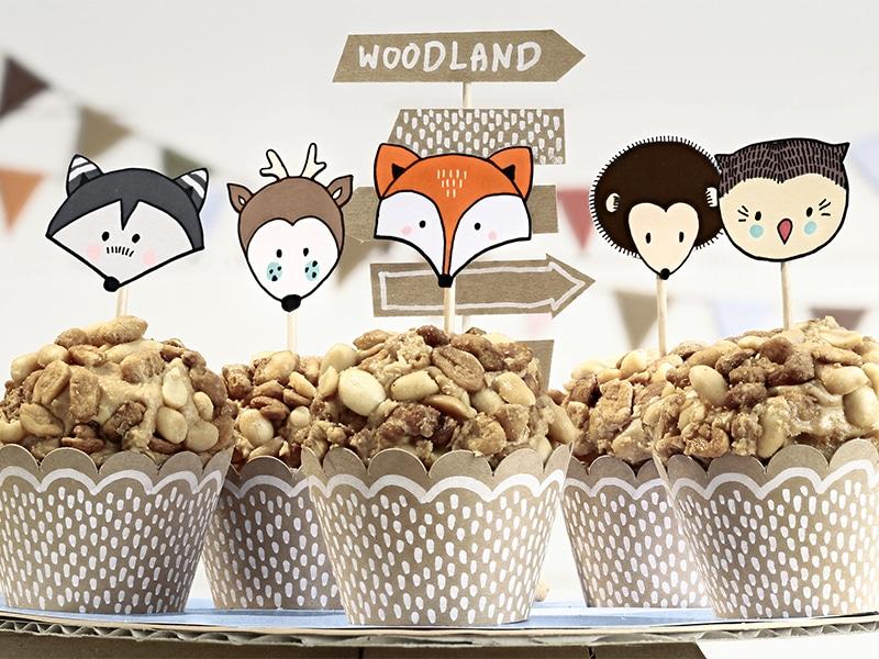 cupcake theme renard