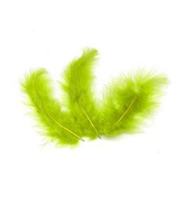 plumes vert anis