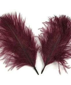 plumes bordeaux
