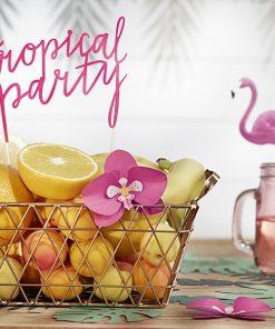 Collection tropical exotique