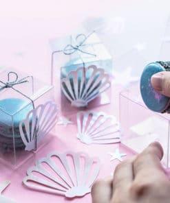 Coquillage confettis