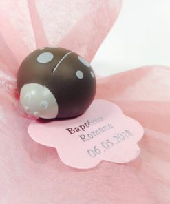 clip coccinelle taupe dragees coccinelle
