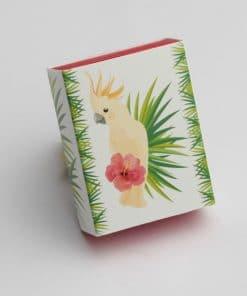 contenant à dragées perruche-collection tropical exotique