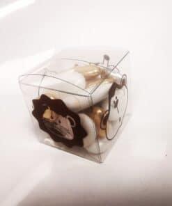 safari boite cube