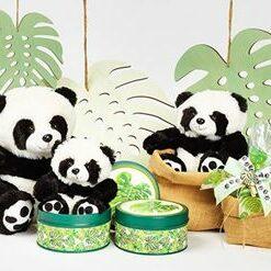 decoration theme panda